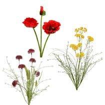 Garden flowers & meadow flowers