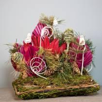 Plant cushion rattan, moss 20cm x 20cm H8cm