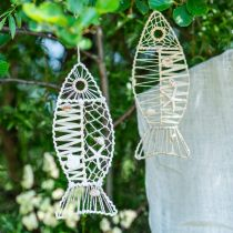 Decorative fish with shell decoration, maritime decoration, fish to hang white 38cm