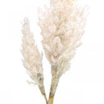 Pampas grass white cream artificial dry grass decoration 82cm