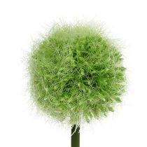 Allium green L37.5cm 4pcs