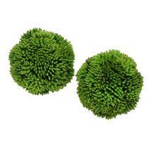 Allium ball 5cm green 4pcs