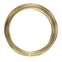 Aluminum wire 2mm 100g gold