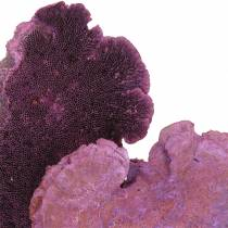 Tree sponge lilac white washed 1kg