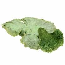 Tree sponge green white washed 1kg