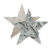 Scattered birch star whitewashed Ø4cm 80p
