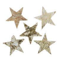 Birch stars 6cm 100p