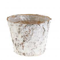 Pot with whitewashed birch Ø15cm H12.5cm