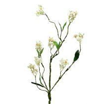 Blossom branch white L 65cm 1p