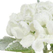 Hydrangea white snow-covered 33cm 4pcs