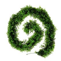 Boxwood garland green L170cm