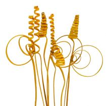 Cane assortment mini golden yellow 75pcs