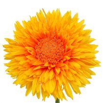 Chrysanthemum Teddy 63cm golden yellow