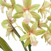 Orchid Cymbidium Green in a pot Artificial H46cm
