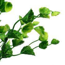 Decorative mint branch green L74cm 6pcs