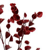 Decorative branch dark red 74cm 6pcs