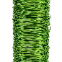 Decorative lacquer wire Ø 0.30mm 30g 50m apple green