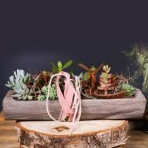 Decorative bowl Paulownia wood 49cm x 14cm H7cm