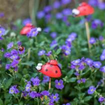 Decorative plug ladybug on stick wood red, black 4cm x 2.5cm H23.5cm 16pcs