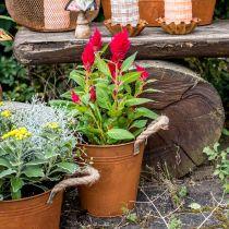 Decorative pot with handles, autumn decoration, metal bowl stainless steel Ø20cm H19cm