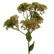 Decorative branch sedum plant green 58cm
