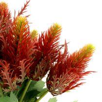 Thistle red-green 20cm 12pcs