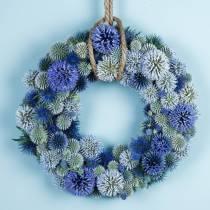 Floral foam ring green Ø25cm 4pcs wreath arrangement