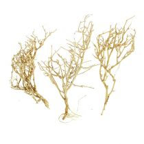 Dry Tree 500g bleached