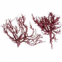 Dekoast coral branch red white washed 500g