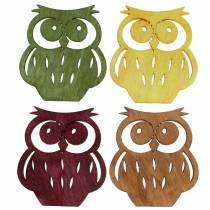 Streudeko owls wood assorted colors 4cm 72pcs