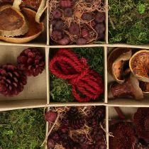 Exotic mix craft set