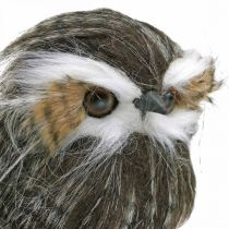 Owl to decorate, autumn, decorative bird, forest decoration H21cm