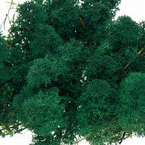 Deko-Mos green reindeer moss preserves moss for handicrafts 400g