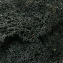 Deko Moos Schwarz preserves reindeer moss for handicrafts 400g