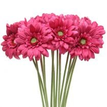Gerbera Pink 48cm 12pcs