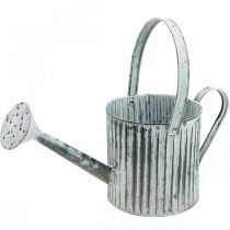 Metal can for planting, watering can for decorating, planting can Ø17cm