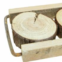 Decorative tray wood with tree slices 34cm x 12cm H3cm
