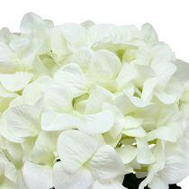 Hydrangea Maxi White Ø30cm L113cm
