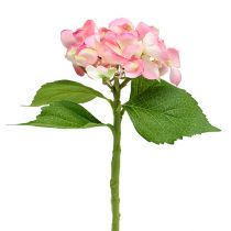 Hydrangea pink 33cm