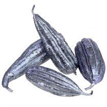 Luffa fruit violet 14cm - 20cm 10pcs