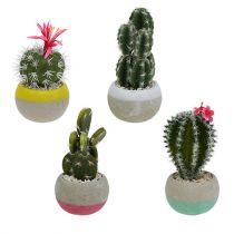Cacti in a pot mix H13cm 4pcs