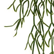 Cactus hanger 115cm green