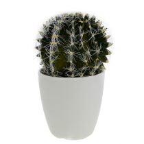 Cactus in a pot green 14cm