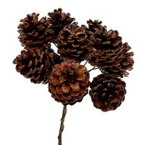 Waxed pine cones wired 100pcs