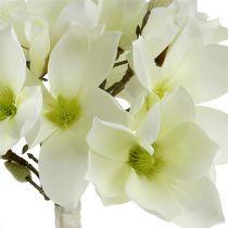 Magnolia bunch white 40cm 5pcs
