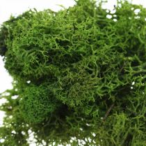 Decorative moss for handicrafts dark green natural moss preserved 40g