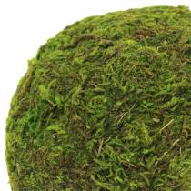 Moss ball Ø9cm 6pcs