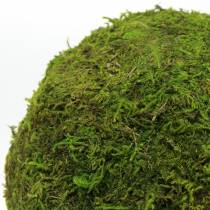 Moss ball Ø15cm 3pcs