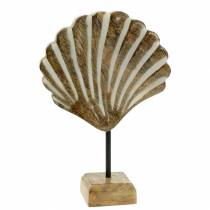 Shell with base wood white, nature 20 × 14cm Maritime decoration for the living room