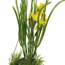 Daffodil in the eggshell to hang Artificial yellow 25cm